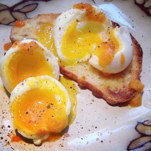 Formas De Cocinar Huevo | Diferentes Maneras De Cocinar Huevos Socialeaters